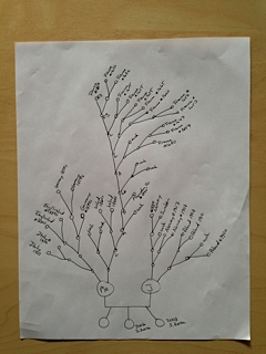 My hastily drawn arrival tree.  March 2013